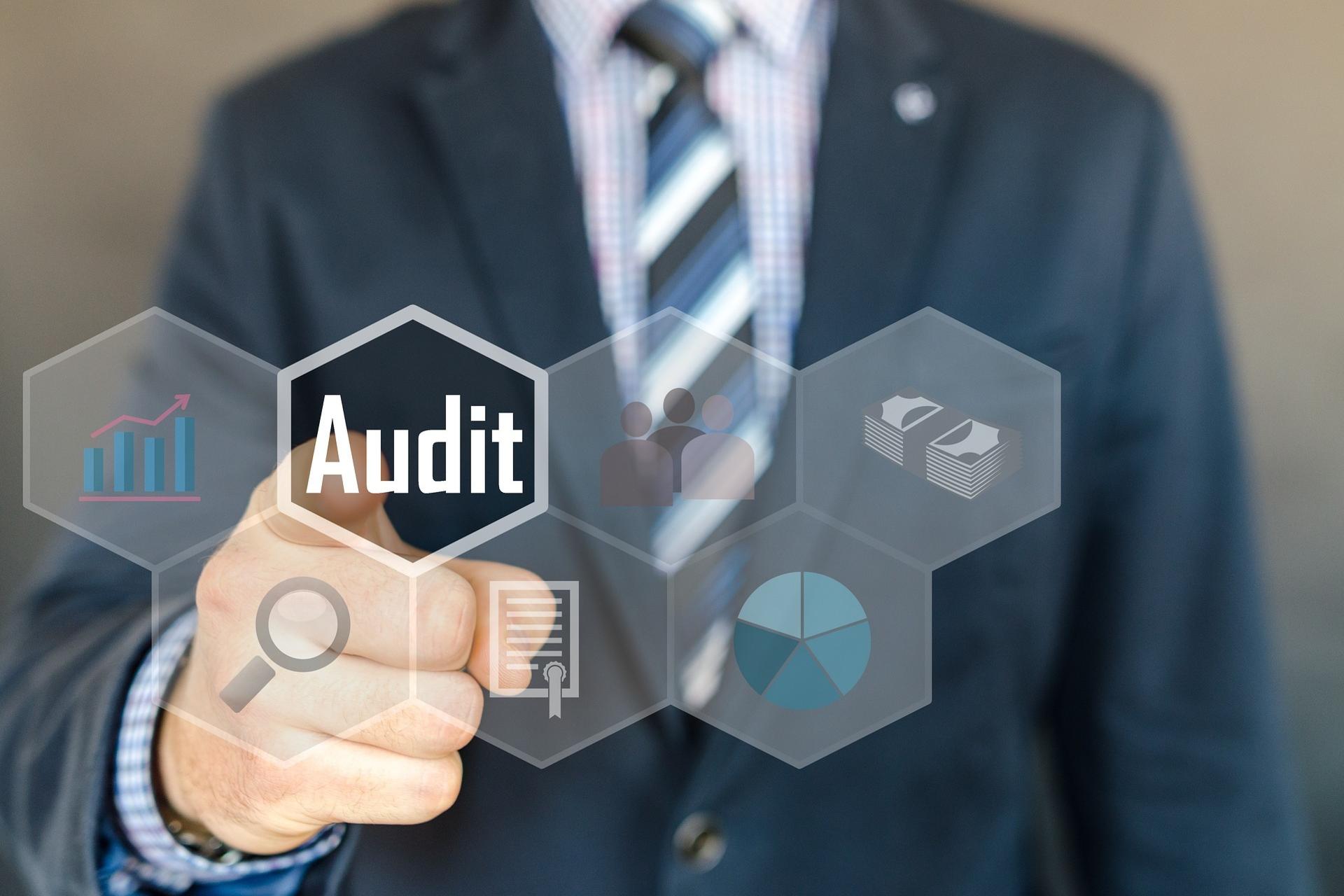 """img src=""""audit"""" alt="""""""">"""
